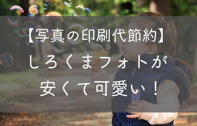 【写真の印刷代節約】ネットプリント「しろくまフォト」が安い&可愛い!
