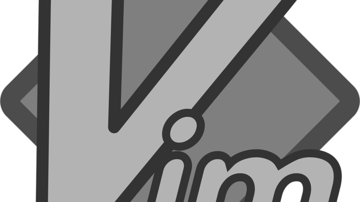 VSCode Vim ワンキーで全選択(ctrl+a)をしたい