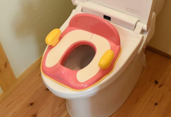 娘のトイレトレーニング成功を祈って!リッチェルの補助便座がおすすめな理由