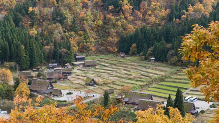 岐阜県側から紅葉が見頃な白川郷に行ってきました