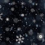 2020年2月12日 粉雪